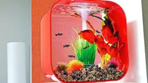 aquarium design exle best fish tank ideas images on aquariums table style excel vba
