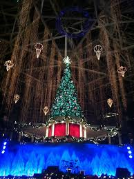 gaylord palms tree lighting and light show during the