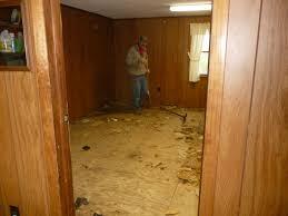 bunny camp gets a new floor