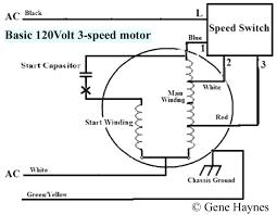 ceiling fan switch wiring diagram carlplant