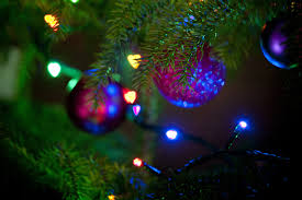 Fairy Light Tree by Free Image Of Close Up Of Christmas Tree Branches