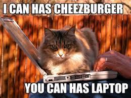 Cat Laptop Meme - image 336994 lolcats know your meme