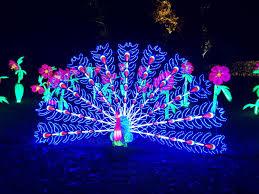 illuminations at kew gardens steph style