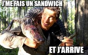Meme Bear Grylls - j me fais un sandwich bear grylls meme on memegen