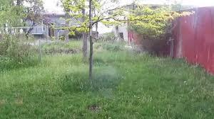 strange sounds in the sky 5 29 15 trumpet like youtube