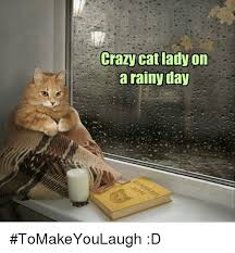 Rainy Day Meme - crazy catlady on a rainy day tomakeyoulaugh d crazy meme on me me