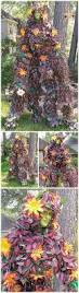 44 best halloween entertainment images on pinterest houston