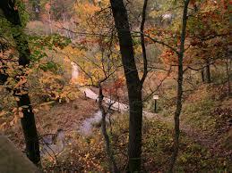 fall color peak coming stillwater area stillwater mn