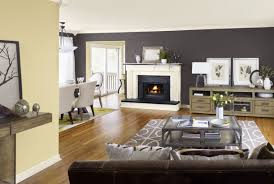 living room delicate living room paint colors and ideas