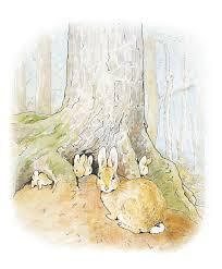 havoc garden tale peter rabbit beatrix