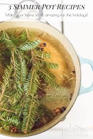 3 fall and holiday simmer pot recipes holidays recipes and