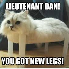 Cute Memes - lieutenant dan you got new legs cute animal memes