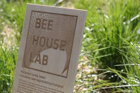 um today bee houses win sustainability award