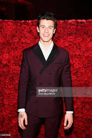charlie puth imagination shawn mendes musician photos pictures of shawn mendes musician