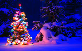 snowy christmas tree lights wallpapers hd wallpapers