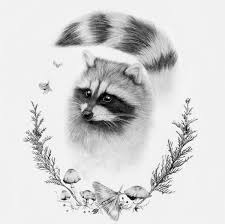 change the racoon with gerard one day lol pinterest racoon