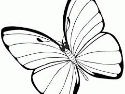 and art ideas including free printable butterfly coloring page