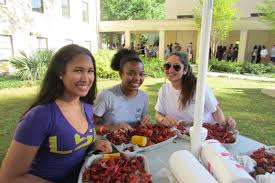 Lsu Union Help Desk by Events Lsu Residential Life