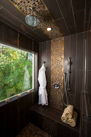 built in shower seat bathroom contemporary with black frosted