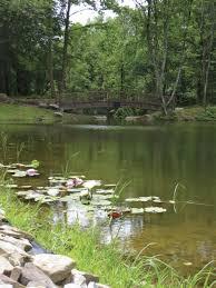 Season Botanic Gardens You Should Visit Pittsburgh Botanic Garden S Growing Season