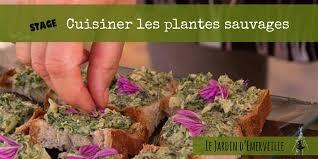cuisine plantes sauvages comestibles stage cuisiner les plantes sauvages 24 mai
