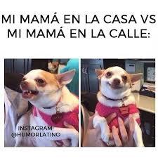 Latino Memes - 24 memes que solo te har磧n re祗r si eres latino univision