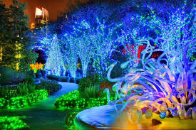 atlanta botanical garden lights gorgeous holiday lights at atlanta botanical gardens gac