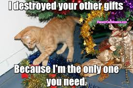 Christmas Memes Funny - the only thing you need on christmas is your cat christmas meme