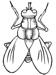 963 preschool bugs images beaded animals