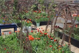 arthur u0027s favourite spring flowers emma bridgewater