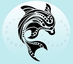 best 25 tribal dolphin tattoo ideas on pinterest dolphins