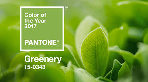 greenery announced pantone u0027s color of the year 2017 shop lc