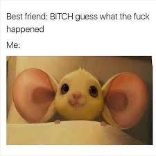 Best Friend Memes - her cus on instagram lol memes best friends bitch i m all