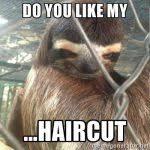 Funny Sloths Memes - funny triggered memes memeologist com