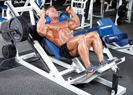 face off hack squat vs leg press muscle u0026 performance