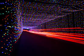 Denver Zoo Of Lights by Top Holiday Light Shows In The United States U003e America By Rail