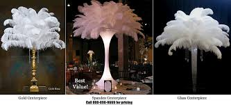 centerpieces rental ostrich feather centerpieces black vase search