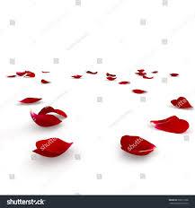 red rose petals scattered on floor stock illustration 336511898