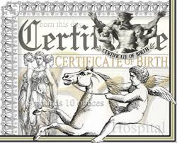 fake birth certificate virginia virginia fake birth certificate virginia fake death