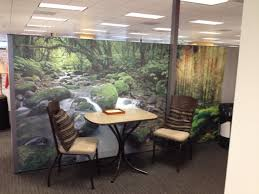 office meeting place decorate by dream cubicle wallpaper looks