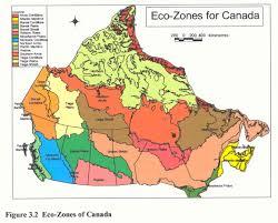 ecozone map of canada