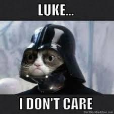 Grumpy Meme - most ridiculous celebrity lawsuit of the week grumpy cat sues for