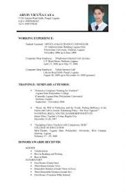 Resume Templates It Examples Of Resumes 89 Breathtaking Example A Job Resume
