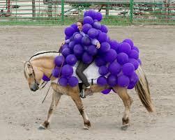 Halloween Grape Costume Hilarious Horse Halloween Costumes Craziest