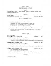 Basic Resume Samples Pdf by Resume Basic Resume Example