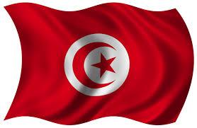 Cairo Flag Free Tunisian Flag 2 Stock Photo Freeimages Com