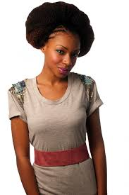 Afro Hair Extensions Uk by All Colours Sleek Noble Bulk