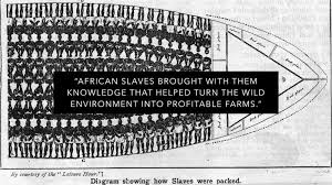 the origin of black friday and slavery here u0027s how new texas public textbooks write about slavery