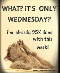 Halfway There Meme - wednesday humor happy hump day mid week halfway there animal