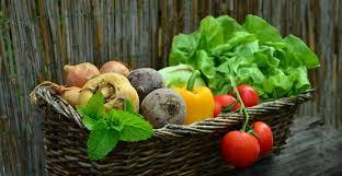legumes cuisine comment utiliser les légumes du jardin en cuisine